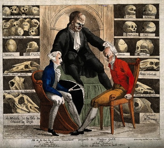 V0011698 In a room filled with skulls of the famous, the phrenologist